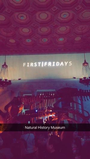 Natural History Museum, Los Angeles, CA, First Fridays, Chantal Boyajian