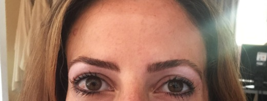 soule skin spa restoration skin care chantal boyajian sandra dee beauty eyebrows